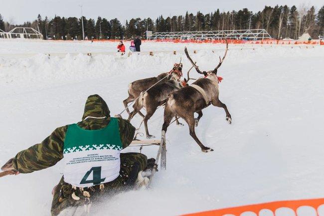 В Ханты-Мансийске прошли состязания оленеводов
