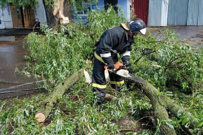 1погибшая, 52пострадавших: поЦентральной России прошел ураган