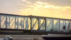 Пассажирок самолета в Катаре заставили пройти гинекологическое обследование