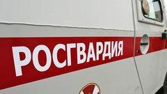 Росгвардия закупит бронемашины для разгона митингов на200 млн рублей