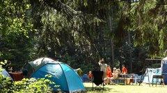Детские палаточные лагеря проверили в Новосибирской области