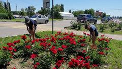 11 тысяч подростков получили временную работу в Краснодарском крае