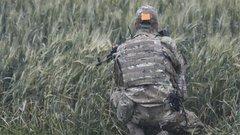 В ДНР посмеялись над угрозами Украины выйти на границу с РФ