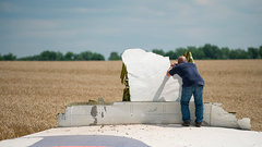 Признать вину: родственники погибших пассажиров МН17 обратились кРоссии