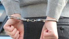 В Москве спустя 7 лет розысков задержан экс-директор гимназии №1317