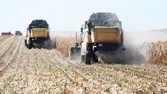 Аграрии Кубани планируют собрать около 11 миллионов тонн зерна