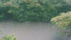Калужские спасатели предупредили о возможных паводках из-за ливней
