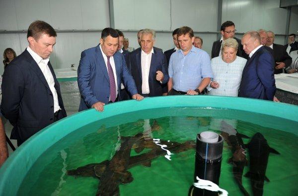 Открытие нового цеха Конаковского завода по осетроводству