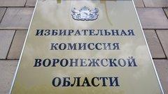 Внесены поправки в Избирательный кодекс Воронежской области