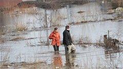 В Иркутской области увеличили размер выплат за потерю урожая при паводках