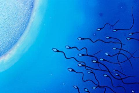 Убить сперматозоиды