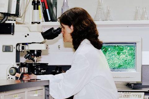 Малярийный плазмодий относится к типу