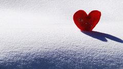 День святого Валентина: Милонов – против, а Навка – нет