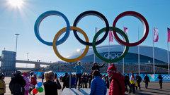 В день открытия ОИ в Сочи Путин поручил сбить «захваченный террористами» самолет