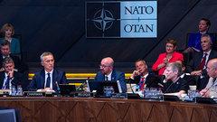 НАТО разорвало на кусочки от противоречий