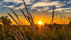 Жаркая погода продержится в Псковской области до 26 июня