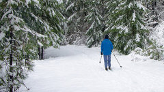 Лыжный праздник в Ноябрьске пройдет весной