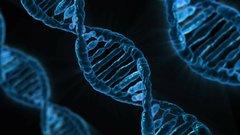 В Китае сообщили о генной модификации детей ради борьбы с ВИЧ