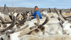 Ямальских студентов будут обучать профессиональному оленеводству