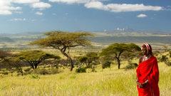 Тропические леса в Африке, возможно, вырубили древние люди