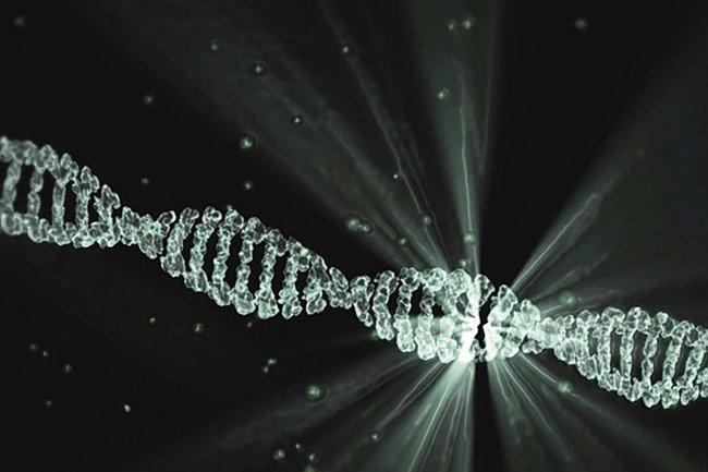 Дивный новый мир или конец человечества: в Британии хотят разрешить генную модификацию детей