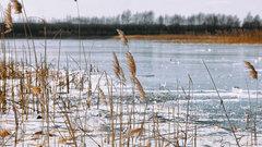 Паводок в Вологде начнется в апреле