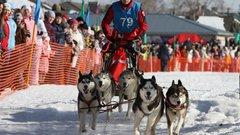 В Югре впервые проведут официальные соревнования по ездовому спорту