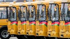189 новых автобусов пополнят школьные автопарки Кубани