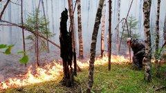 В Якутии за сутки ликвидировали 12 природных пожаров