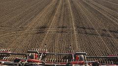 Во Владимирской области 88% посевов озимых культур хорошо пережили зиму