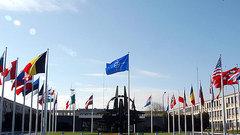 НАТО ставит мир на грань катастрофы